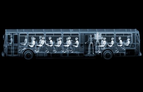 Bus_1457006i