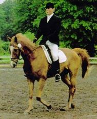 caballo Eastern Express