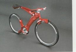 Bici (97)