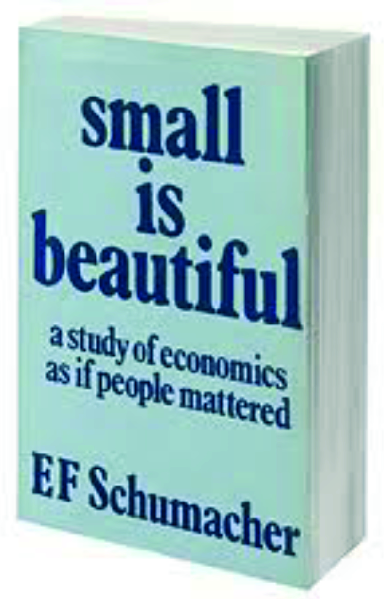 SmallIsBeautifulBook